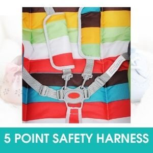 5 POINT SAFETY HARNESS