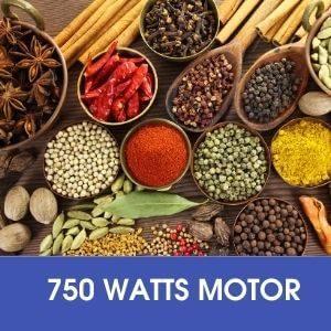 750 WATTS MOTOR