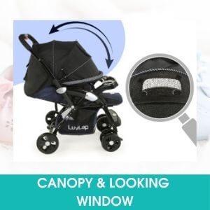CANOPY & LOOKING WINDOW