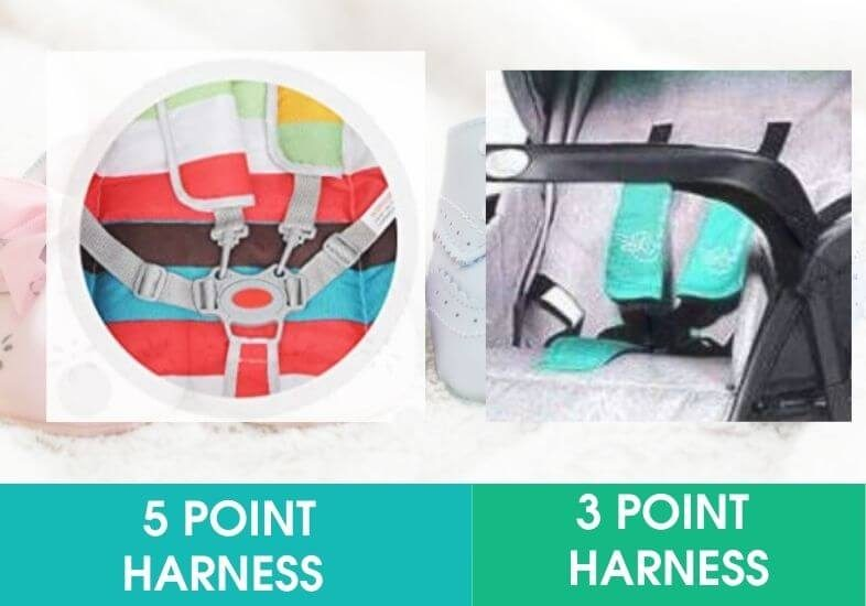 Five point Harness vs Three point Harness