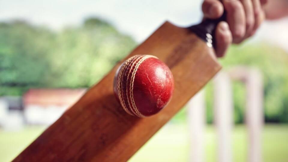 Best Cricket Bats in India