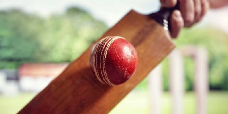 5 Best Cricket Bats in India: Reviews, Buying Guide, and Price